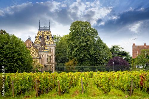 Papiers peints Vignoble Chateau with vineyards, Burgundy, France