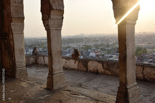 Poster Jaipur view