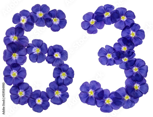 Poster Arabic numeral 63, sixty three, from blue flowers of flax, isolated on white bac