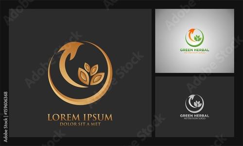 leaf arrow herbal logo