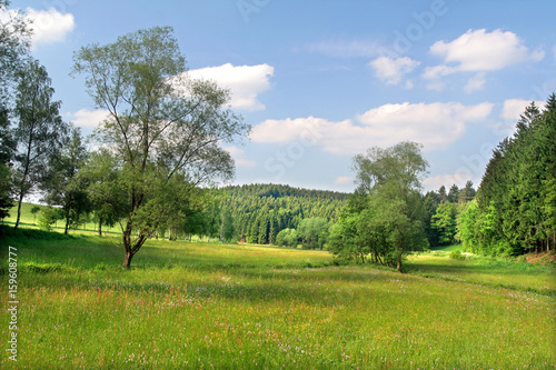 canvas print picture sommer im land