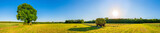 Heuballen auf einem Anhänger, ländliches Panorama im Sommer - 159614158