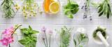 Fresh herbs - 159628191