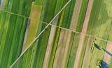 Aerial landscape - 159665750