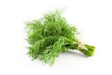 Fresh green dill - 159693903