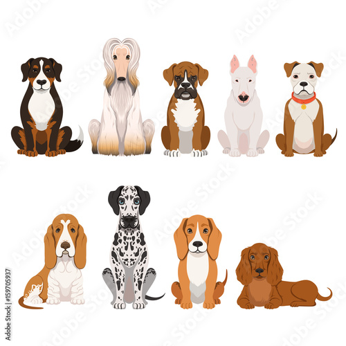 Deurstickers Babykamer Different breeds of dog. Group of domestic animals in cartoon style. Vector illustrations set