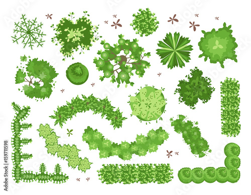 Papiers peints Blanc Set of different green trees, shrubs, hedges. Top view for landscape design projects. Vector illustration, isolated on white background.