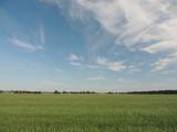 Sommerhimmel am Niederrhein