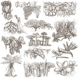 flowers and trees around the world - an hand drawn collection, freehand sketching - 159764932