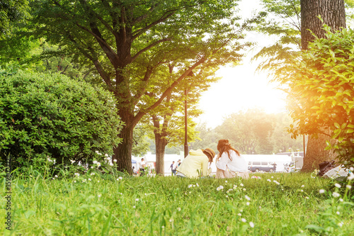 Fotobehang Lente landscape of beautiful park