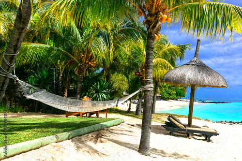 Relaxing tropical holidays. scenery with hammock under palm tree