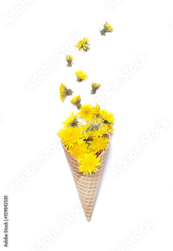 Waffle cone with yellow dandelions on white background