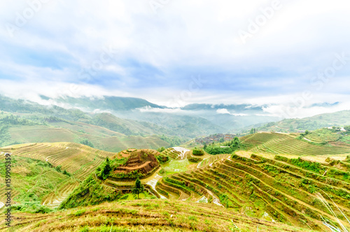 View on rice terrace fields by longesheng in China