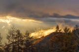 甘利山から見る日の出の風景