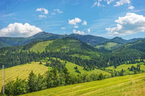 Zdjęcia na płótnie, fototapety na wymiar, obrazy na ścianę : Tatras mountains landscape