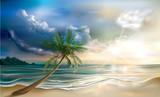 Palm on tropical beach landscape