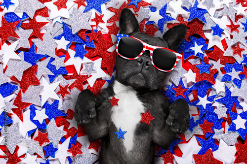 Poster independence day 4th of july dog