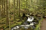 Wanderweg durch die Ravennaschlucht, Schwarzwald