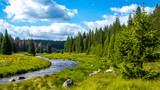 Flusslauf im Nationalpark, Waldbach - 160299119