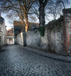 Old stone wall and cobbled street and bare trees, Belgium.