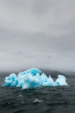 Holkham Bay Iceberg