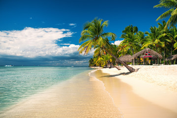 Tropical beach on Saona Island, Dominican republic