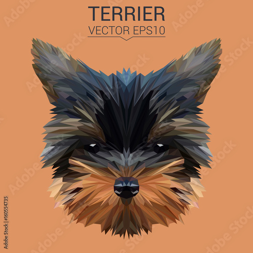 Terrier puppy dog low poly design. Triangle vector illustration. © shekularaz