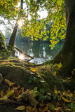 Sunrise at a river with colorful autumn leaves