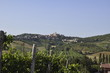 Toskana im Sommer - 160613529