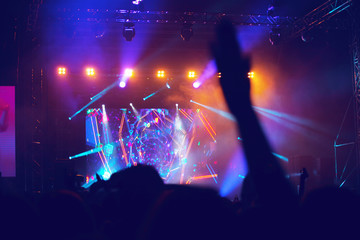 Jubelnde Menge bei einem Konzert