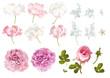 Flower elements set - 160647724