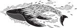 Flying whale. Vector illustration