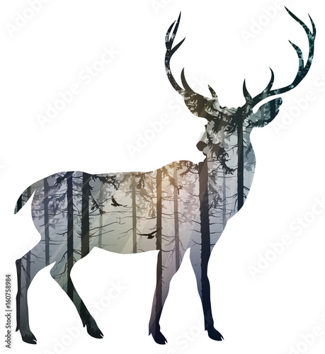 Aluminium Hipster Hert Silhouette of a deer. Inside it is a misty coniferous forest with sun rays and flying birds. Isolated object on white background