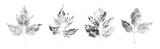 Original nature print - 160784933