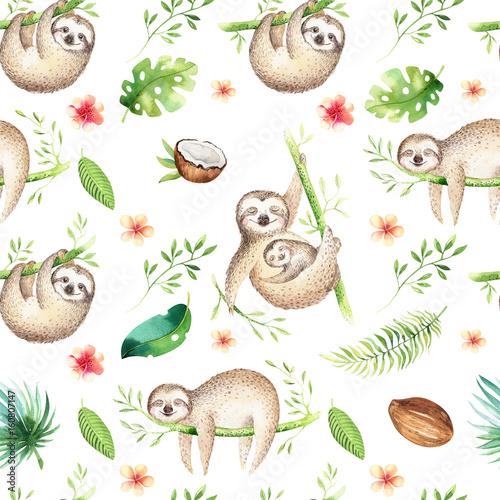 Dziecko zwierzęta opieszałości pepiniera odizolowywający bezszwowy deseniowy obraz. Akwarela boho tropikalny rysunek, dziecko tropikalny rysunek ładny liści drzewa palmowego, zwrotnik zielony tekstury, egzotyczny kwiat. Prysznic dla dzieci Aloha