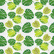 Cotton fabric Monstera leaves in halftone style. Seamless vector background. Summer tropical design. Textile rapport.
