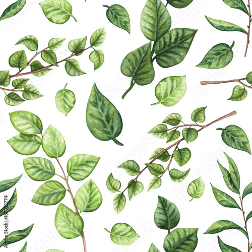 Seamless Pattern of Watercolor Green Leaves and Tree Branches - 160832774