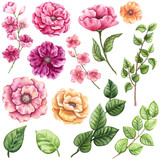 Set of Watercolor Greenery and Pink Flowers - 160833774