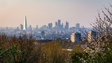 View over London's city centre from One Tree Hill in South-East London