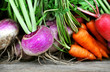 Постер, плакат: Crate of fresh harvested root vegetables: carrots turnips and radishes selective focus