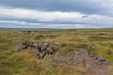 Iceland Caked Lava field landscape