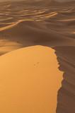 Desert Er-Ghebbi Morocco