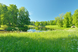 The natural landscape in the spring.