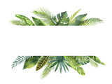 Watercolor banner tropical leaves and branches isolated on white background. - 161070903
