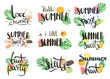 Vector hand-drawn lettering with illustrations of leaves of palm trees, fruits, cocktails, etc. Summer labels, logos, hand drawn tags and elements set for summer holiday. Summer sweets and ice cream - 161104316