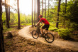 Mountain biker riding cycling in summer forest - 161188708