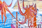 raditional seafood octopus dries at the rope as restaurant advertisement in front of turquoise color Ionian sea. Sunny day scenery. Located on Santorini island, Cyclades island archipelago in Greece. - 161222163