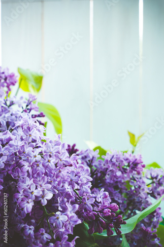 A bouquet of lilacs in front of light background, vintage colors