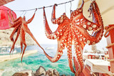 raditional seafood octopus dries at the rope as restaurant advertisement in front of turquoise color Ionian sea. Sunny day scenery. Located on Santorini island, Cyclades island archipelago in Greece. - 161263532
