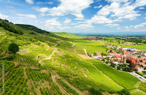 Papiers peints Vignoble Hills covered with vineyards in the wine region of Alsace, France